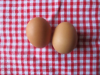 Nebezpečné látky se zřejmě z opuštěného areálu ve Lhenicích dostávají až do vajec. Řešení ekologické zátěže musí být co nejrychlejší