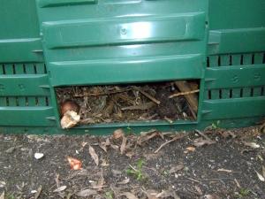 Novela zákona o odpadech a nová vyhláška nařizuje obcím třídit bioodpady
