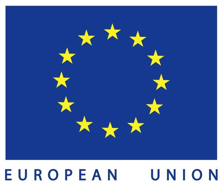 EU flag wt text2