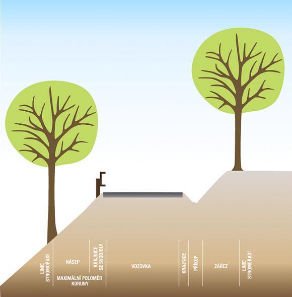 Alej v zářezu či náspu žádoucí odstup stromu od vozovky je