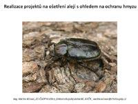 Ochrana-hmyzu
