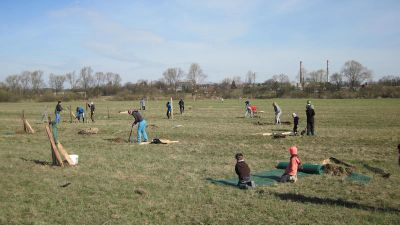 Nové aleje v Poodří. Ochránci na jaře vysadili 350 stromů