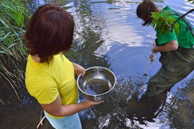 Arnika zjišťuje znečištění pražských vod jedy z elektroodpadu a hasicích pěn