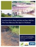 Coal-fired power plant and pulp and paper mill site:  Tha Tum Mercury Hot Spot in Thailand
